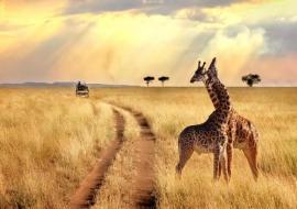 Tanzánia És Zanzibár - Csoportos Körutazás