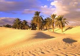Tunéziai körutak